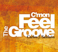 C'mon Feel The Groove